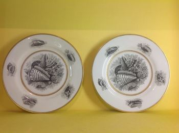A pair of Barr, Flight and Barr Worcester plates