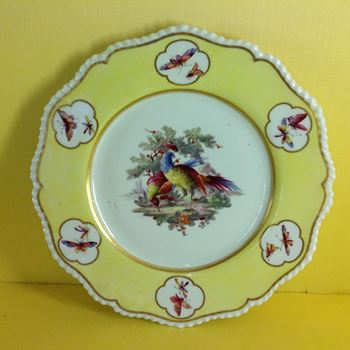 An unusual Flight, Barr and Barr Worcester plate