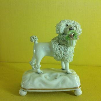 A Staffordshire porcelain model of a poodle
