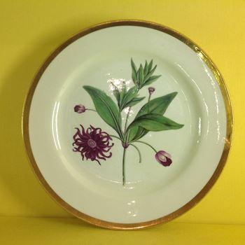 A Chamberlain's Worcester botanical plate