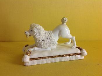 A Minton model of a poodle