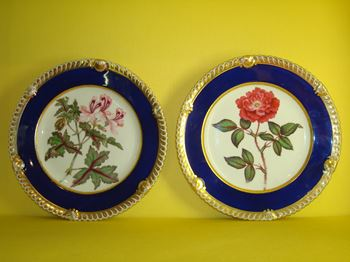 A pair of Chamberlain's Worcester botanical plates