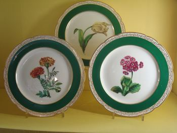 A set of ten Paris porcelain (Nast) botanical dessert plates